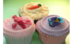 Learn to Make and Decorate Cupcakes Class